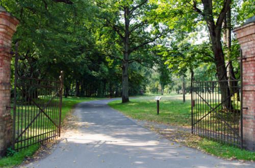 large antique gate in the park